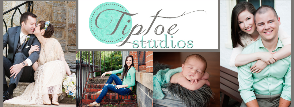 The Tiptoe Studios Blog